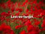 Lest we forget - poppies