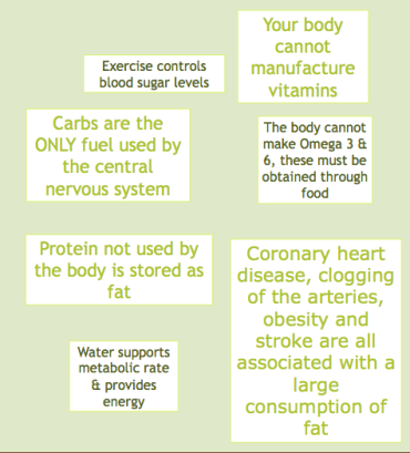 image of nutrition infographic